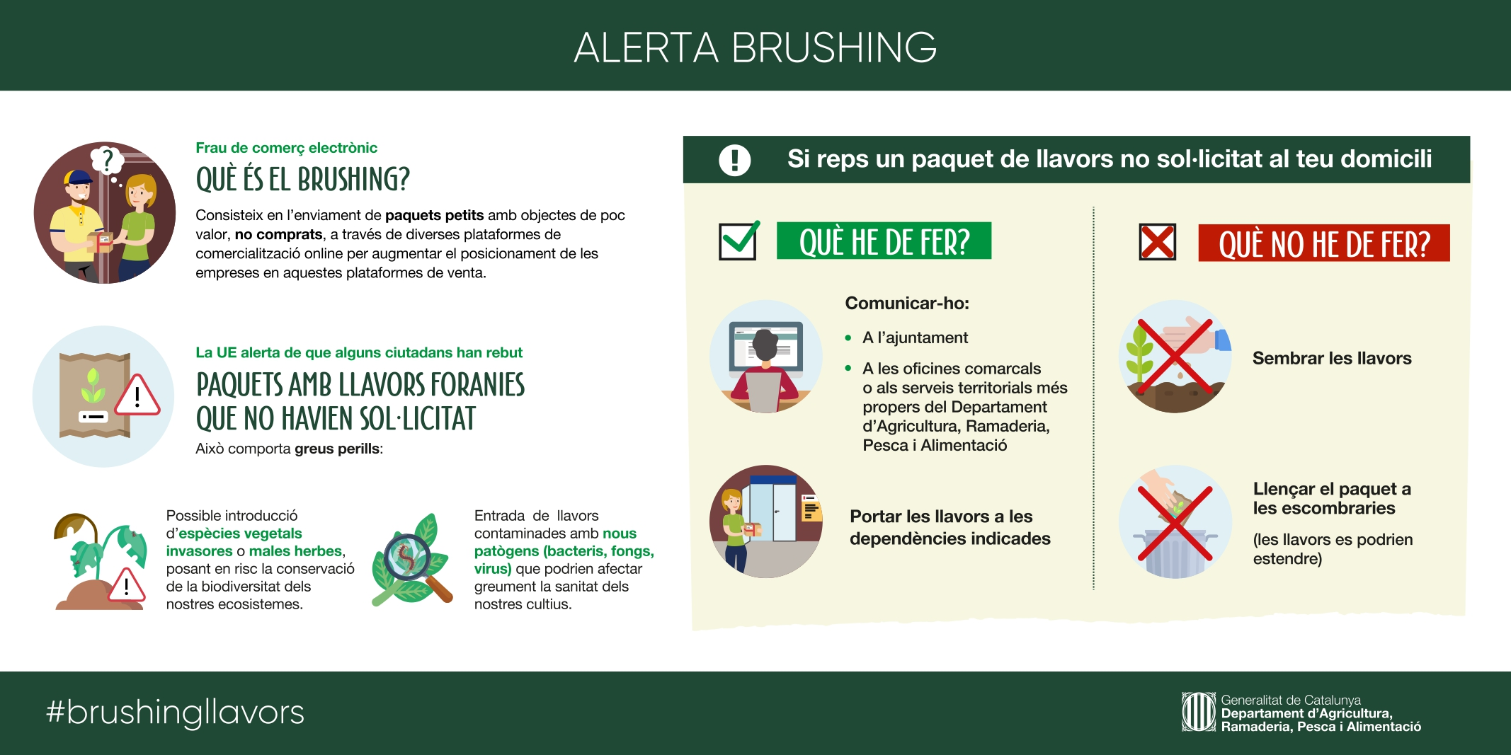 ALERTA BRUSHING_pages-to-jpg-0001